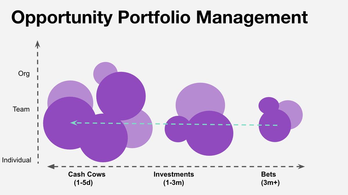 Opportunity Portfolio Management